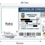 Licencias no profesionales (tipos A, B y F): requisitos para su obtención